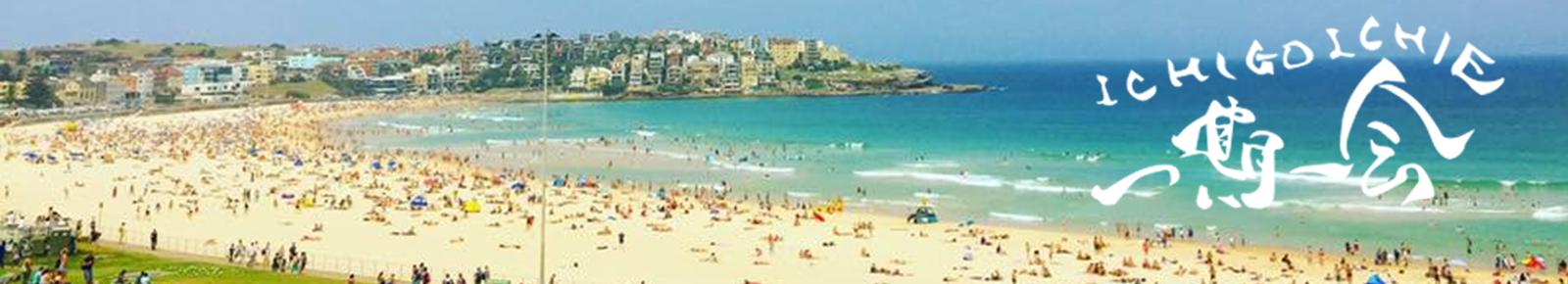 綺麗なビーチ